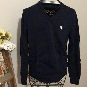 Express Men's size M v-neck sweater